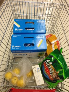 A typical weekly grocery shop whilst on Pulse!